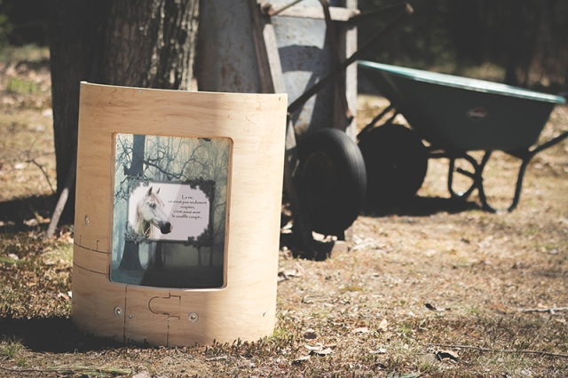 coquille de bois nature